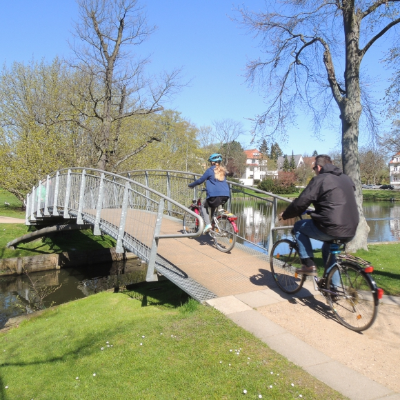 Shortline ZigZag Bridges