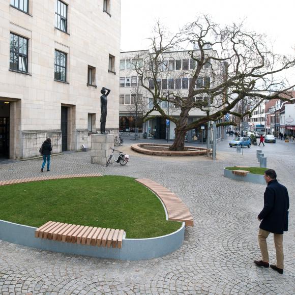 Free Form Tree Isles