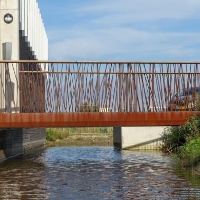 Bowie Bridges