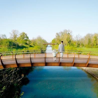 Swan Bridges